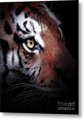 Eye Of The Tiger 2 Metal Print by Animals Art