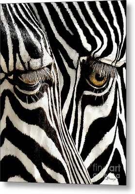 Eyes And Stripes Forever Metal Print