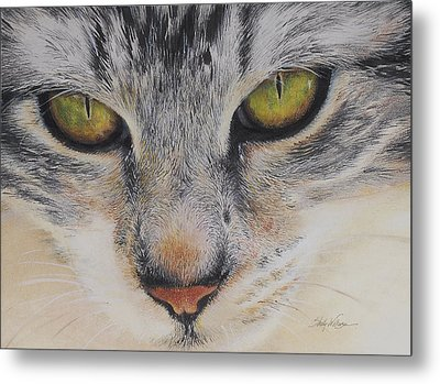 Eyes Of Wisdom 2 Metal Print by Shelly Wilkerson