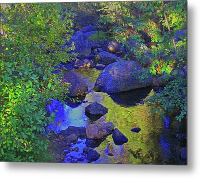 Metal Print featuring the photograph Face In The Creek by Tammy Sutherland