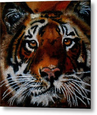 Face Of A Tiger Metal Print