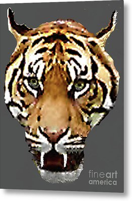 Metal Print featuring the photograph Face-to-face With A Bengal Tiger  by Merton Allen