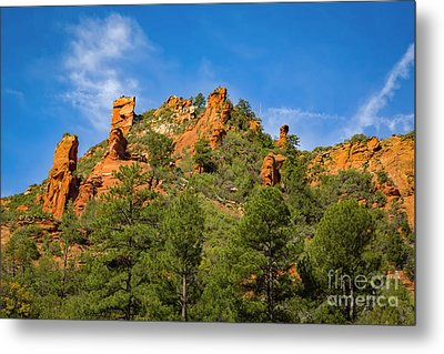 Faces In The Rocks Metal Print