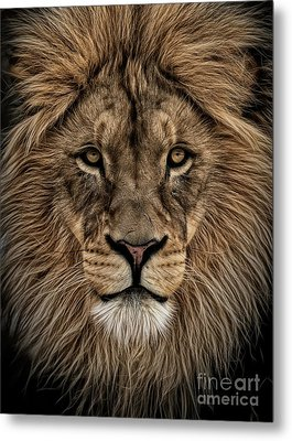Facing Courage Metal Print