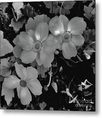Faded Flowers Metal Print