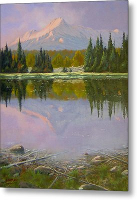 Fading Light - Peaceful Moment Metal Print by Kenneth Shanika