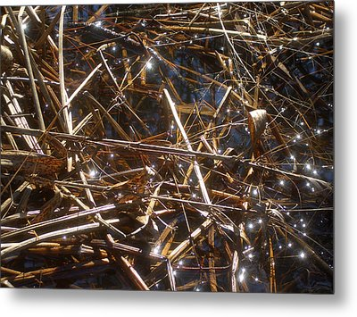 Fairies On The Marsh Metal Print