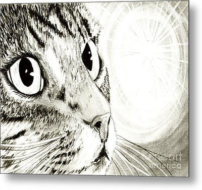 Metal Print featuring the drawing Fairy Light Tabby Cat Drawing by Carrie Hawks