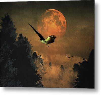 Falcons Hunting In The Evening Metal Print