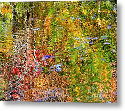 Fall 2016 Metal Print by Elfriede Fulda