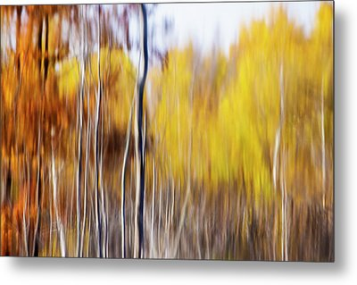 Metal Print featuring the photograph Fall Abstract by Mircea Costina Photography