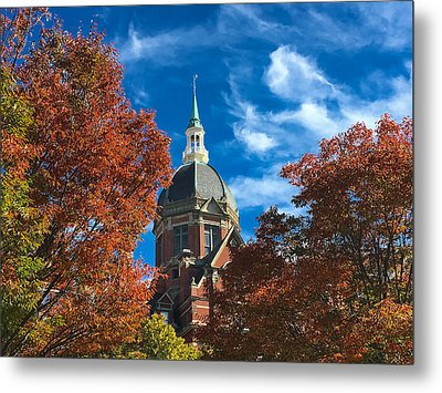 Fall And The Dome Metal Print
