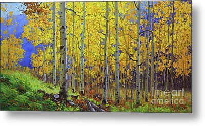 Fall Aspen Hill  Metal Print