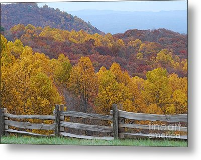 Metal Print featuring the photograph Fall Blend by Eric Liller