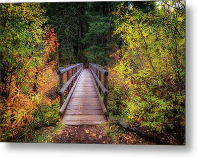 Metal Print featuring the photograph Fall Bridge by Cat Connor