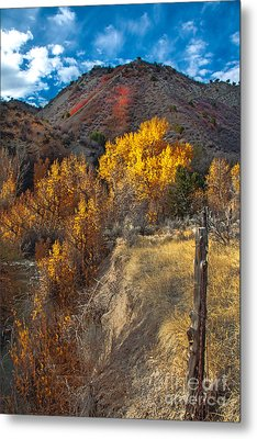 Fall Color Along Fence Line Metal Print by Robert Bales