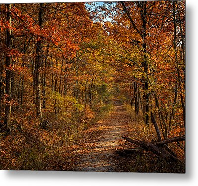 Metal Print featuring the photograph Fall Color At Centerpoint Trailhead by Michael Dougherty