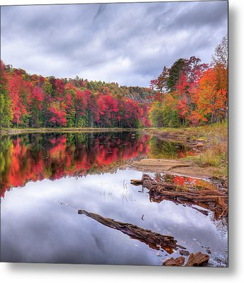 Metal Print featuring the photograph Fall Color At The Pond by David Patterson