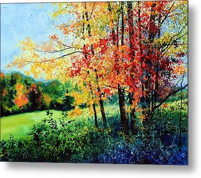Fall Color Metal Print by Hanne Lore Koehler