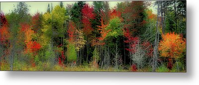 Metal Print featuring the photograph Fall Color Panorama by David Patterson
