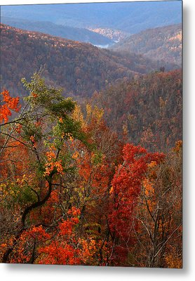 Metal Print featuring the photograph Fall Color Ponca Arkansas by Michael Dougherty
