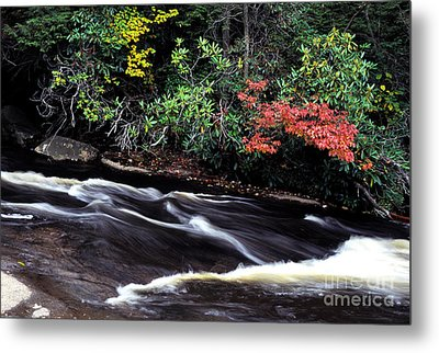 Fall Color Swallow Falls State Park Metal Print by Thomas R Fletcher