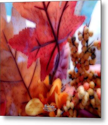 Fall Colors # 6059 Metal Print by Barbara Tristan