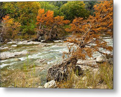 Fall Colors Along The Pedernales River Metal Print by Mark Weaver