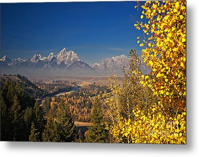 Fall Colors At The Snake River Overlook Metal Print