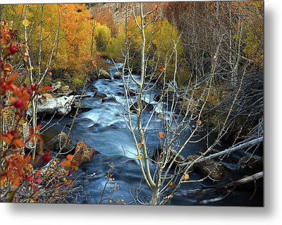 Metal Print featuring the photograph Fall Colors Bishop Creek by Dung Ma
