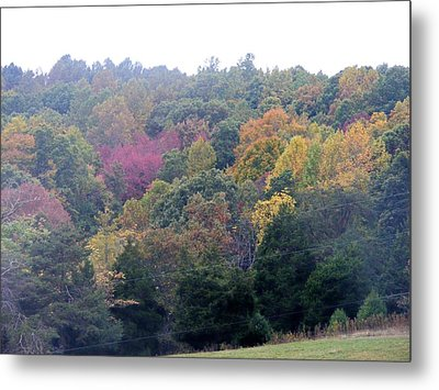 Fall Colors In Rockbridge County Metal Print