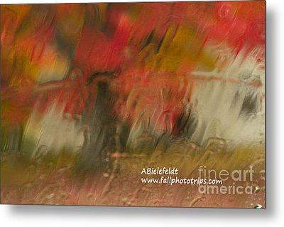 Fall Colors In The Rain Metal Print