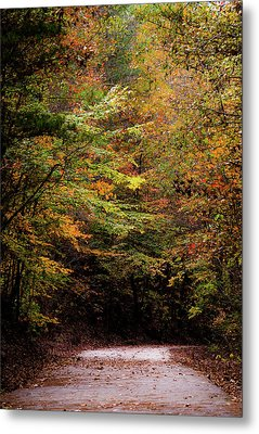 Metal Print featuring the photograph Fall Colors On The Trail by Shelby Young