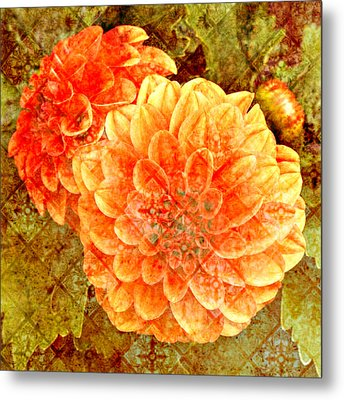 Fall Dahlias Metal Print by Cathie Tyler