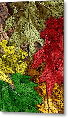 Fall Down Metal Print by Tom Romeo