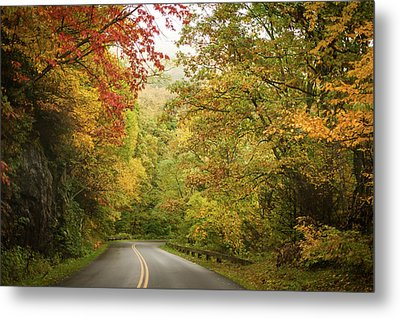 Fall Drive On The Blue Ridge Parkway Metal Print by Terry DeLuco