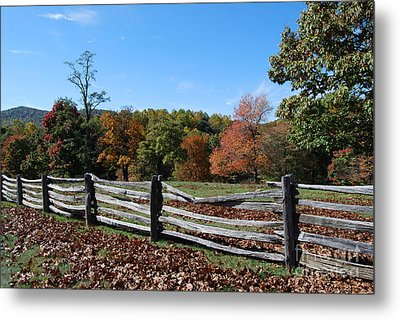 Fall Fence Metal Print by Eric Liller