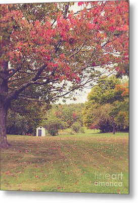 Fall Foliage And Old New England Shed Metal Print
