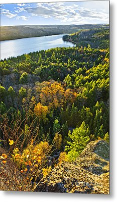 Fall Forest And Lake Top View Metal Print by Elena Elisseeva