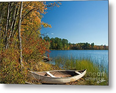 Metal Print featuring the photograph Fall Fun by Alana Ranney