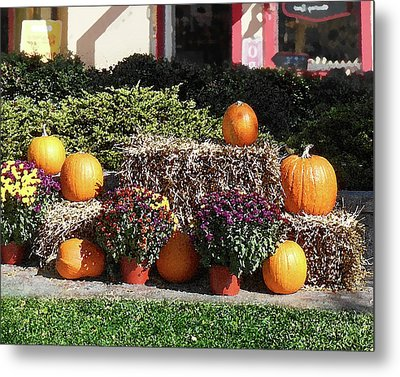 Metal Print featuring the photograph Fall Gifts Harvest Time by Irina Sztukowski