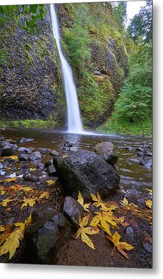 Metal Print featuring the photograph Fall Gorge by Jonathan Davison