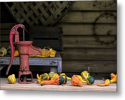 Fall Gourds Metal Print