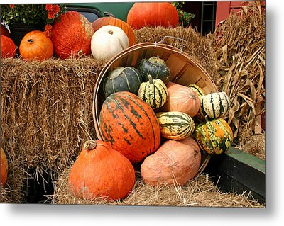 Fall Harvest Metal Print by Frank Russell