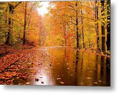 Fall Holidays Metal Print by Mary Timman