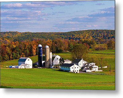 Fall In Amish Country Metal Print by Lou Ford