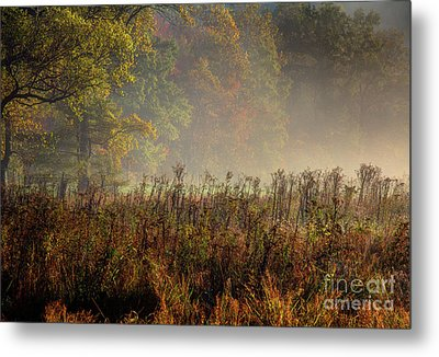 Metal Print featuring the photograph Fall In Cades Cove by Douglas Stucky