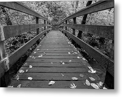 Metal Print featuring the photograph Fall In Oregon Bw by Jonathan Davison
