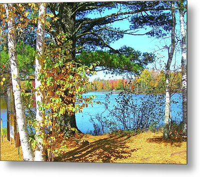 Fall In Phillips Wi Metal Print by Randy Rosenberger