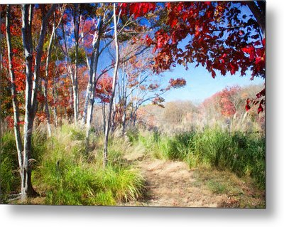 Fall In Red And Green Metal Print